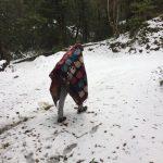 हुम्लामा लगातार हिमपात , जनजिबन कषटकर