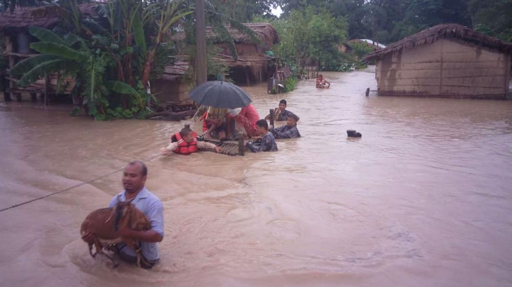 कैलाली-कञ्चनपुर डुबानमा, ५६०० परिवार विस्थापित